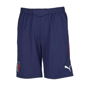 Puma Italy World Cup 2010 Soccer Training Short