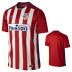 Nike  Atletico Madrid Soccer Jersey (Home 2015/16) - SALE: $69.50