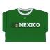Nike Mexico Ringer Soccer Tee (Green/White)