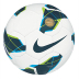 Nike Premier Team FIFA Soccer Ball - SALE: $24.50