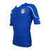 Puma Italy Authentic World Cup 2010 Soccer Jersey (Home 2010/11)
