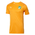 Puma Ivory Coast  World Cup 2014 Soccer Jersey (Home)