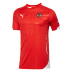 Puma Austria World Cup 2014 Soccer Jersey (Home)