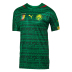 Puma  Cameroon  World Cup 2014 Soccer Jersey (Home)