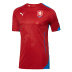 Puma  Czech Republic  World Cup 2014 Soccer Jersey (Home)