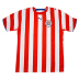 Puma Paraguay Soccer Jersey (Home 2006)
